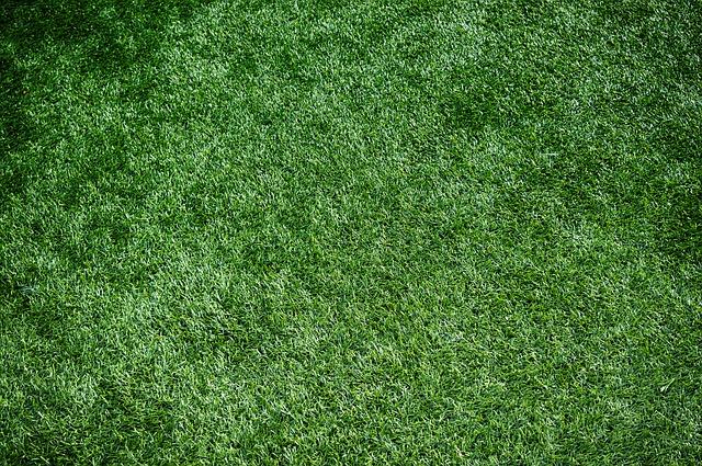 artificial-grass-gold-coast-from-termiturf